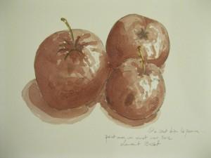Laurent-Bessot-pom-pom-pommes