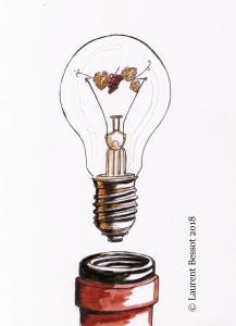 Laurent-Bessot-idee-de-genie