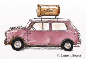 Laurent-Bessot-la-mini