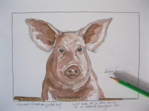 Laurent-Bessot-piggie