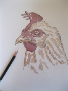 Laurent-Bessot-poulette